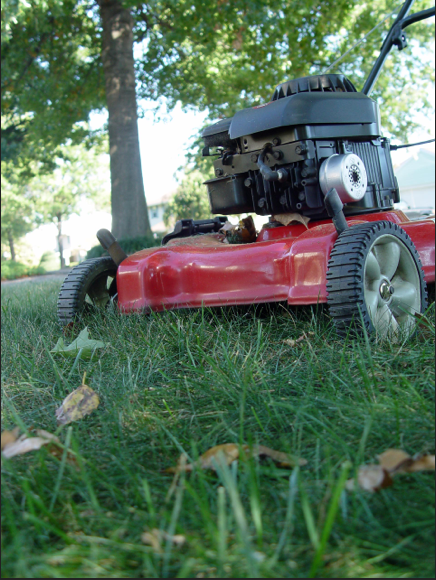 Lawn mowing in autumn